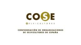 Logo COSE