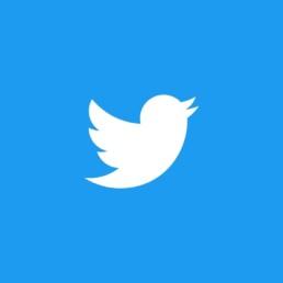 ¿Quieres mantener a tu publico informado de las novedades? Esta es tu red social. Mantén a tu público conectado con tan solo 140 caracteres. Conecta con otros profesionales y mejora tu imagen de marca.