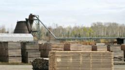 subida de precios de la madera